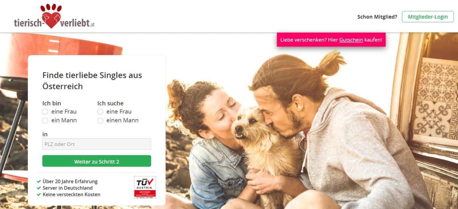 Single plattform österreich kostenlos